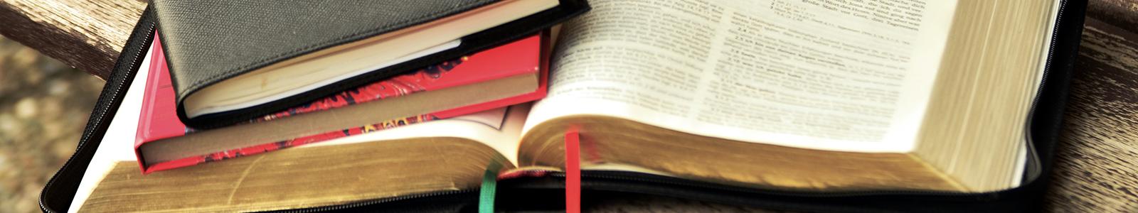 Bibel lesen